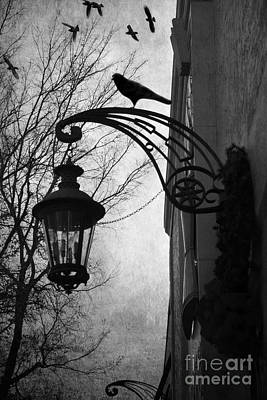 Fantasy Surreal Spooky Photograph - Surreal Gothic Haunting Street Lamps Lanterns With Ravens And Crows by Kathy Fornal