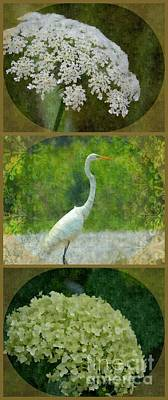 Tryptych Digital Art - Surrounding Beauty by Maria Urso
