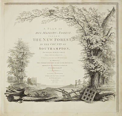Survey Of The New Forest Art Print by British Library
