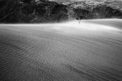 Death Valley Photograph - Survivor In A Sand Storm by John Aydelotte