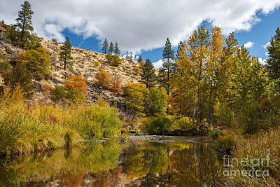 Photograph - Susan River 10-25-12 by James Eddy