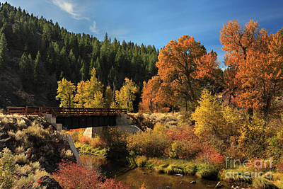 Photograph - Susan River Bridge On The Bizz 2 by James Eddy