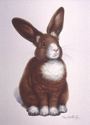 Painting - Susan's Bunny by Tom Wooldridge