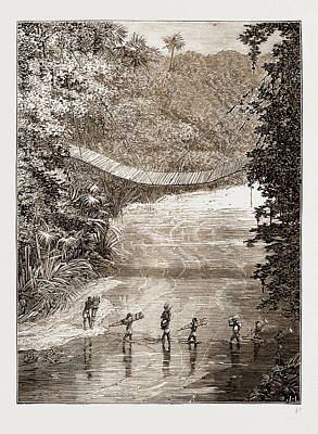 Suspension Drawing - Suspension Bridge Over The Lulindi, Africa by Litz Collection