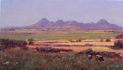 Sutter Buttes In Summer Afternoon Art Print by Takayuki Harada