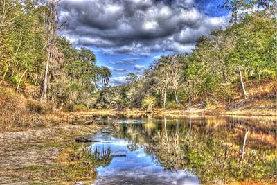 Suwannee River Scene Art Print by Donald Williams