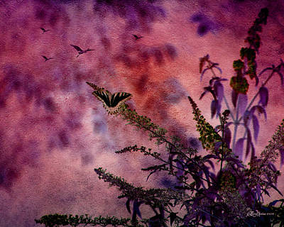 Photograph - Swallowtail In The Butterfly Bush - Featured In The Wildlife And Comfortable Art And Newbies Groups by Ericamaxine Price