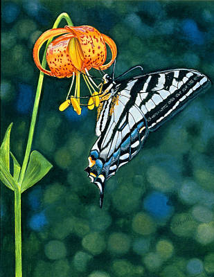 Swallowtail Splendor Original by Sandi Howell