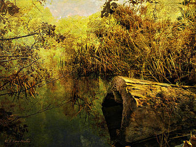 Digital Art - Swamp Fever by J Larry Walker
