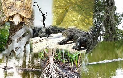 Swamp Life Art Print