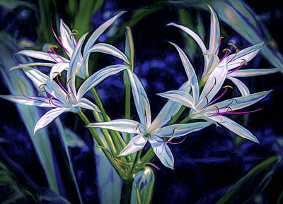 Digital Art - Swamp Lilies by Steven Sparks