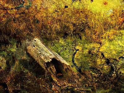 Digital Art - Swamp Log by J Larry Walker