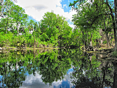 Photograph - Swamp Reflections 2 by C H Apperson