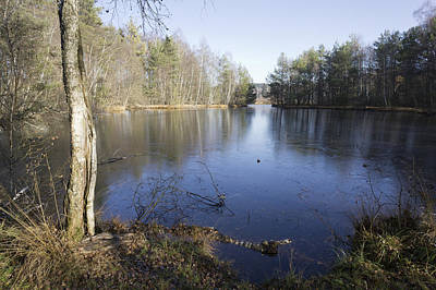 Photograph - Swamp Schwenninger Moos by Matthias Hauser