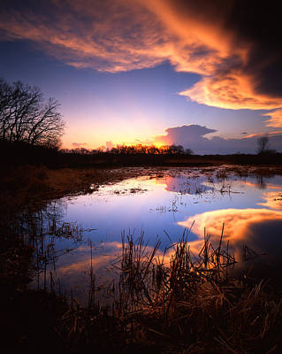 Photograph - Swamp Sunset II by Ray Mathis
