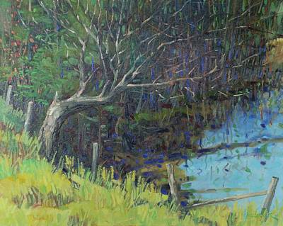 Swamp Oil Painting - Swamp Tree by Phil Chadwick