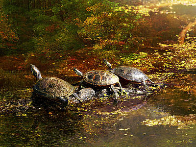 Digital Art - Swamp Turtles by J Larry Walker