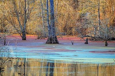 Photograph - Swampy Bayou by Diana Mary Sharpton