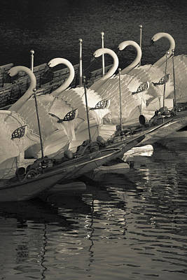 Swan Boats In A River, Boston Public Art Print