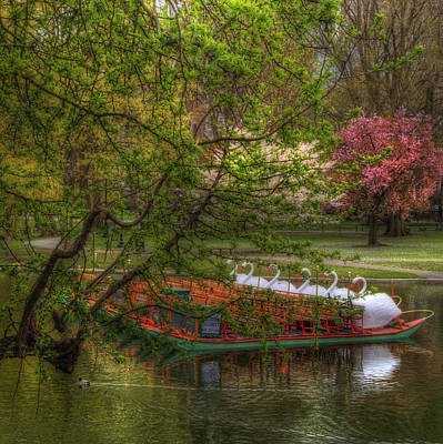 Photograph - Swan Boats In Boston Public Garden by Joann Vitali