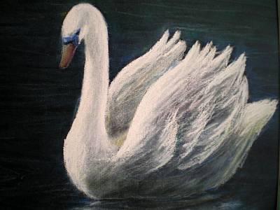 Swan II Art Print