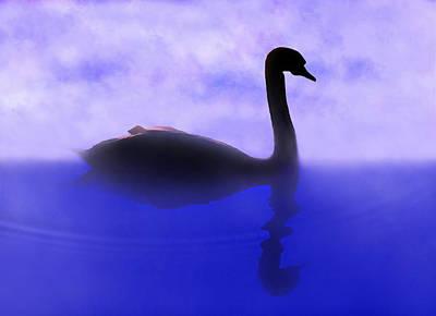 Swan Digital Art - Swan Lake by Terril Heilman