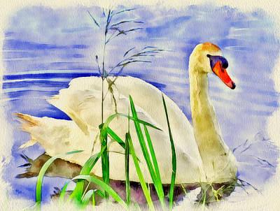 House Pet Digital Art - Swan Lake by Yury Malkov