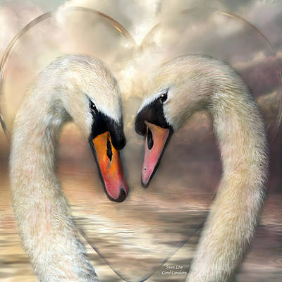 Mixed Media - Swan Love by Carol Cavalaris