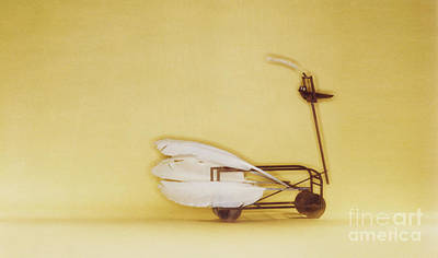Swan On Wheels Art Print