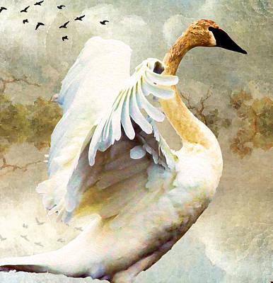 Swan Sense Art Print by Kathy Bassett