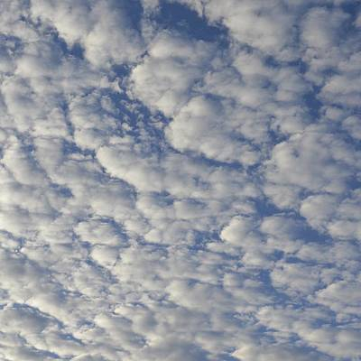 Photograph - Swan Valley Sky 1.3 by Cheryl Miller