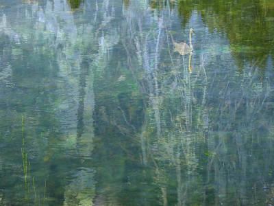 Swanee River Art Print by Lyn  Perry