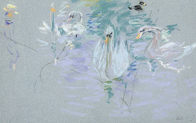 Swan Drawing - Swans by Berthe Morisot