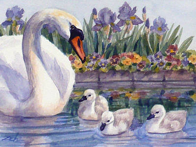 Painting - Mother Swan And Cygnets by Janet  Zeh