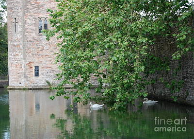 Swans Under The Palace Walls Art Print by Linda Prewer