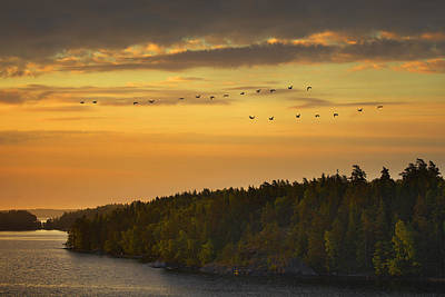 Photograph - Sweden Shoreline Mg_4082 by David Orias