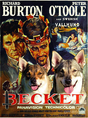 Painting - Swedish Vallhund - Vastgotaspets  Art Canvas Print - Becket Movie Poster by Sandra Sij