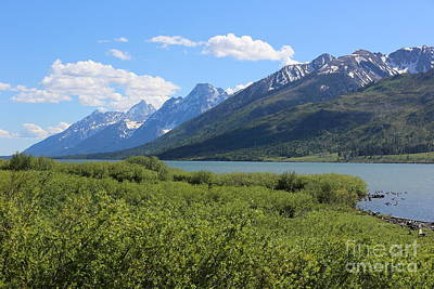 Photograph - Sweeping Tetons by Carol Groenen