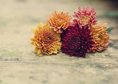 Photograph - Sweet Autumn by Heather Applegate