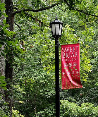 College Girls Wall Art - Photograph - Sweet Briar College Lamp Post by Todd Hostetter