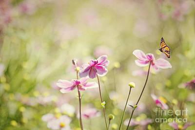 Sweet Butterfly Garden Art Print