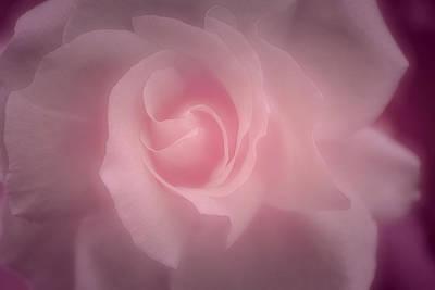 Sweet Painting - Sweet Caress by The Art Of Marilyn Ridoutt-Greene