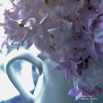 Photograph - Sweet Cream Lilac by Barbara St Jean