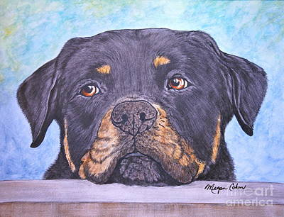 Painting - Rottweiler's Sweet Face by Megan Cohen