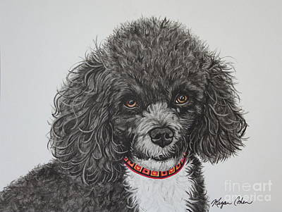 Pup Painting - Sweet Miss Molly The Poodle by Megan Cohen