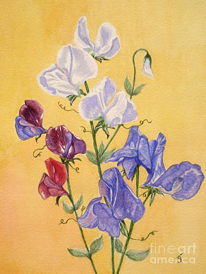 Painting - Sweet Peas by Yvonne Johnstone