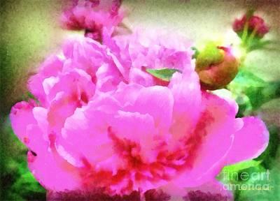 Raspberry Digital Art - Sweet  Pink Peony by Janine Riley