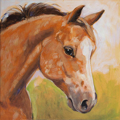 Sweet Strawberry Roan Appaloosa Art Print by Tracie Thompson