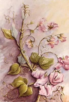 Sweet Sweet Pea Art Print by Marta Styk