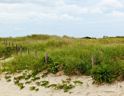 Renewing Photograph - Sweetest Silence By The Sea by Michelle Wiarda